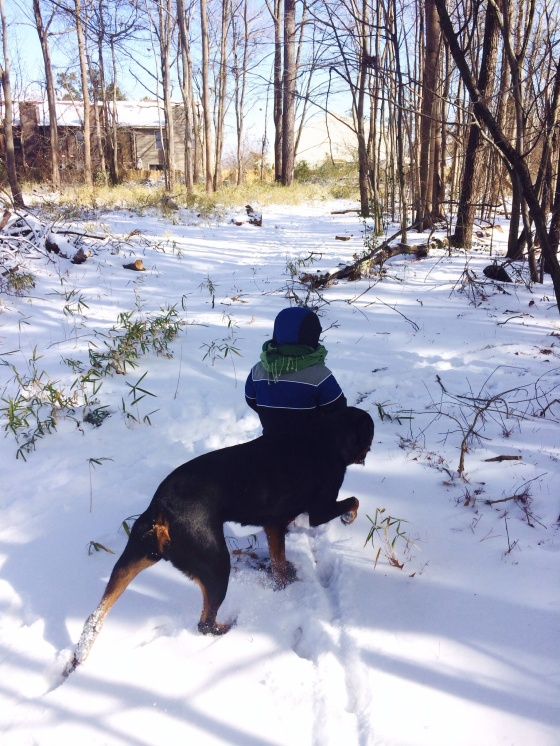 "Last week and this week it snowed quite a bit (for the Norfolk area, that is!). Edward loved going out with Caesar to 'splore in the woods near our house. (That's ""explore"" in Edward talk :-)"